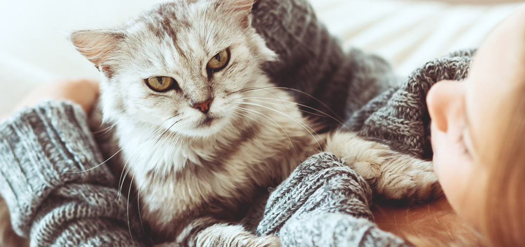 Coping with pet allergies - banner